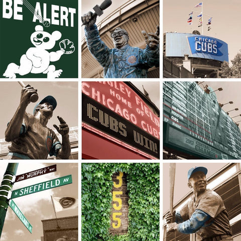 Chicago Cubs Canvas Art Any Print Holy Cow Canvas