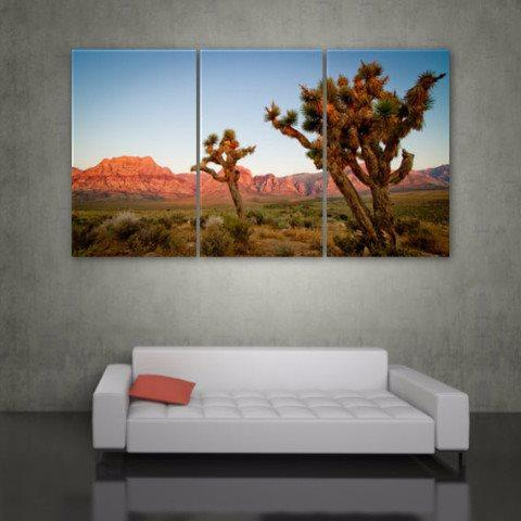 Joshua Tree Canvas Wall Art - Canvas Wall Art - HolyCowCanvas