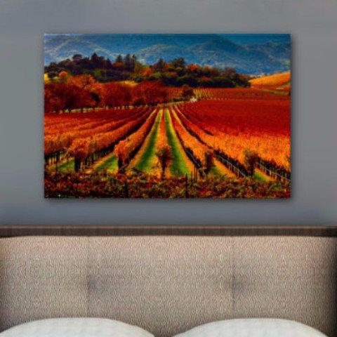 Wine Country Wall Art - Napa Valley - Canvas Wall Art - HolyCowCanvas