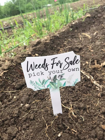Weeds For Sale - Garden Stake