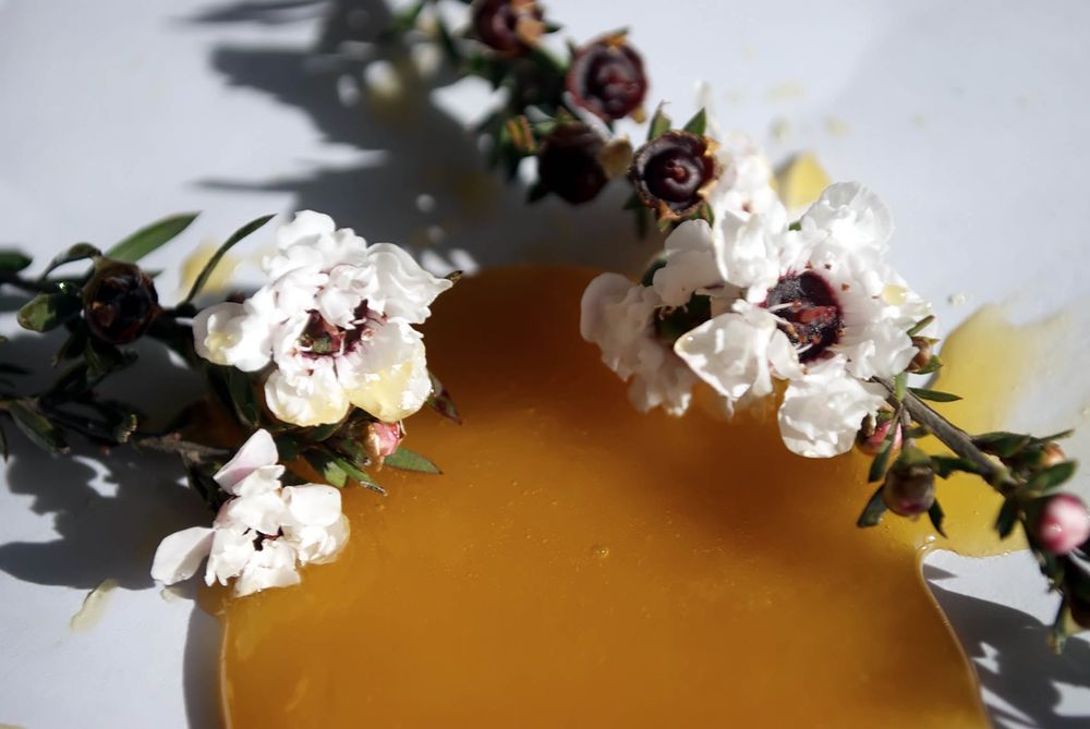 Manuka Honey and Flower