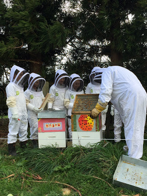 Toko School Children learning about beekeeping