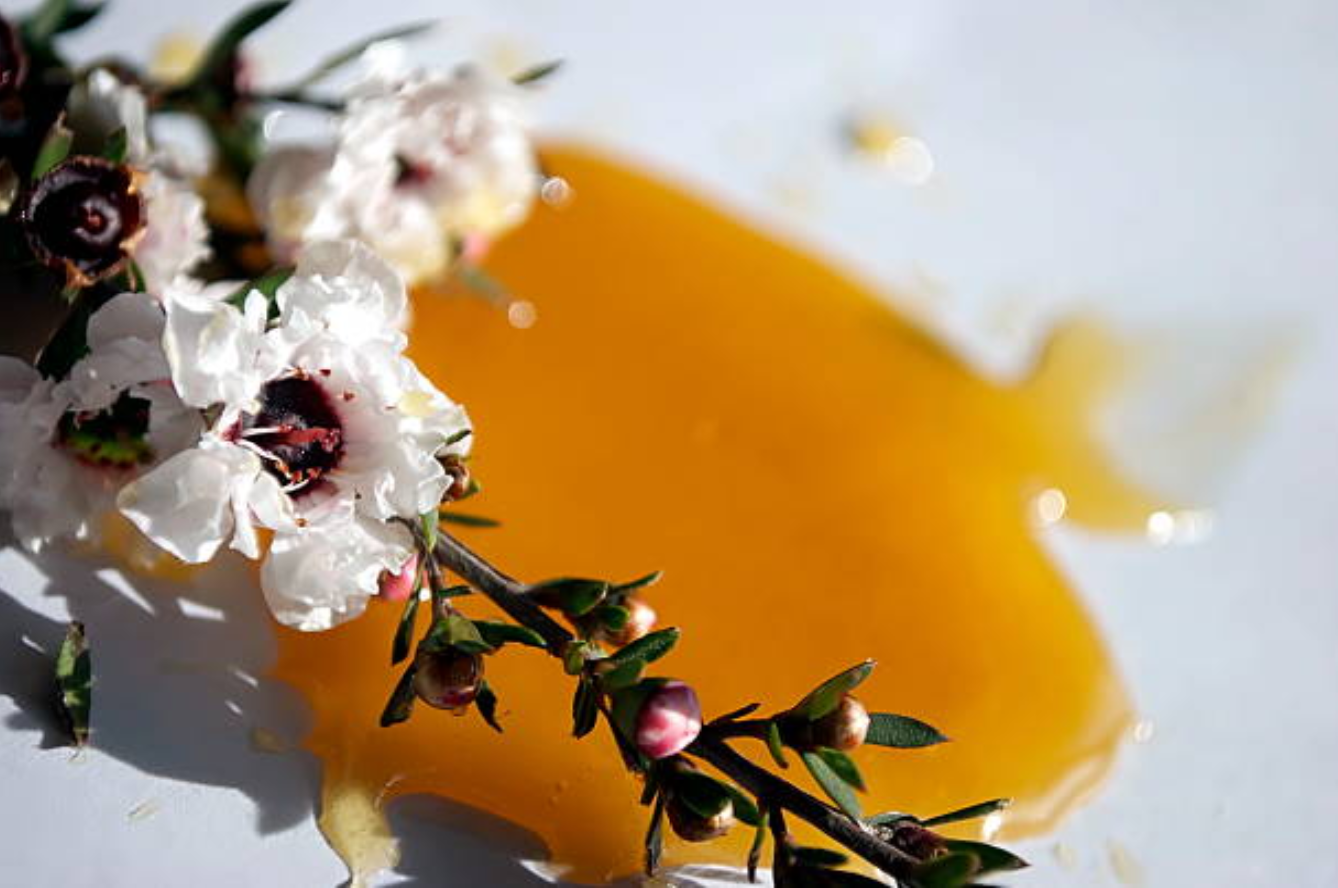 Manuka flowers and manuka honey