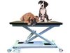 Veterinary Tables & Trays
