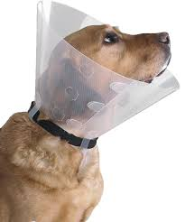 SMI CLICK E-COLLAR AT INTERAKTIV VET