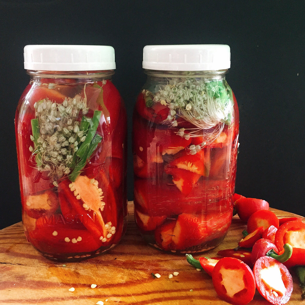 Spicy Fermented Chilli Sauce