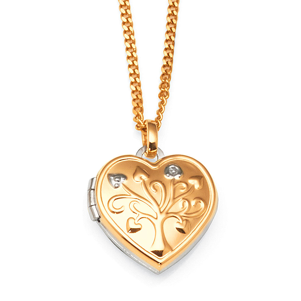9ct Yellow Gold & Sterling Silver Heart Locket