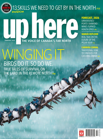 UpHere Magazine - 2016 February