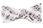 The Amadeus Bow Tie
