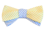The Elliot Smith Bow Tie