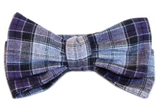 The Descartes Bow Tie