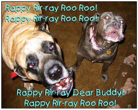 Rappy Rir-Ray Ro Roo!