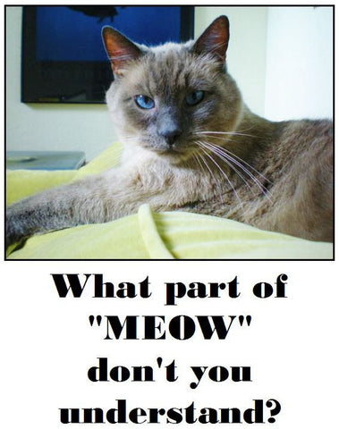 What Part of Meow