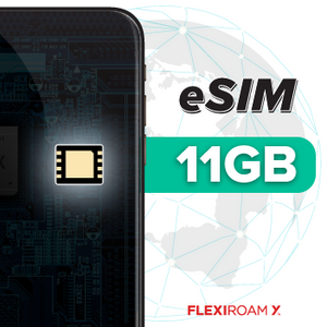11GB Global Data Plan + eSIM (valid for 360 days)