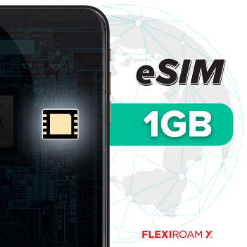 1GB Global Data Plan + eSIM (valid for 90 days)