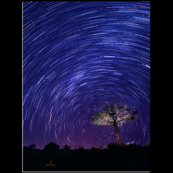 Star Trails in the African Sky - art photograph under acrylic wall art