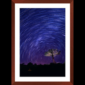 Star Trails in the African Sky - Framed art photograph print