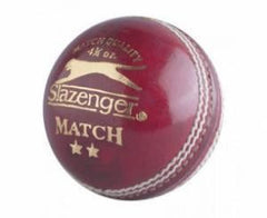 SLZ Dale Steyn Match Ball 4 3/4 Oz