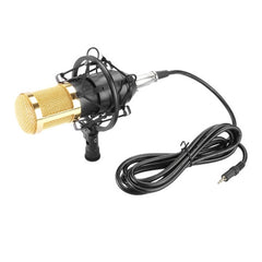 FIFINE F-800 Professional Condenser Sound Recording Microphone with Shock Mount for Studio Radio Broadcasting 3.5mm Earphone Port Cable Length: 2.5m(Black)