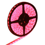Epoxy Waterproof Red LED 5050 SMD Rope Light 60 LED/M Length: 5M