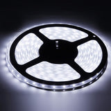 Casing Waterproof White LED 3528 SMD Rope Light 60 LED/M Length: 5M