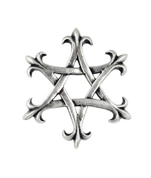 FLEUR DE LIS STAR OF DAVID PENDANT