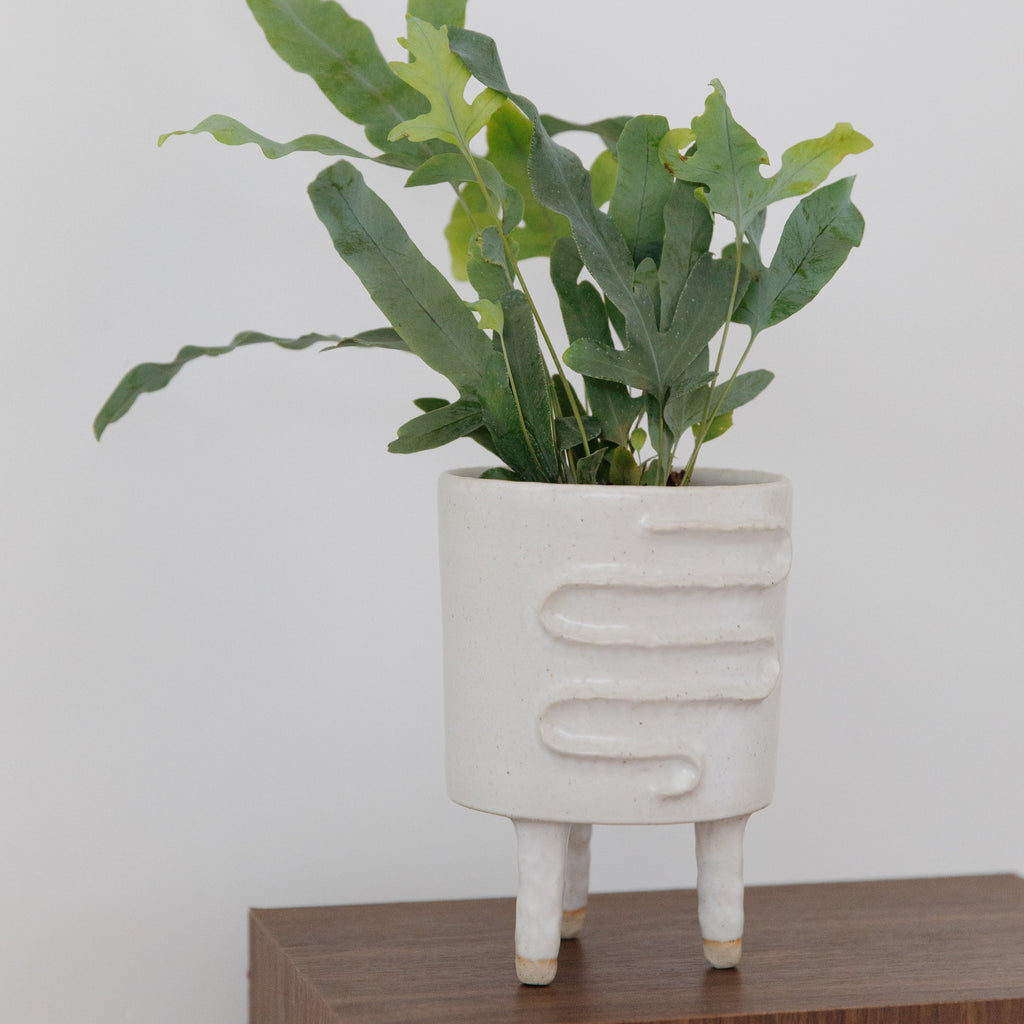 Peta Armstrong : Snake Planter with Legs