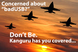 Prevent BadUSB - USB Firmware Protection from Kanguru