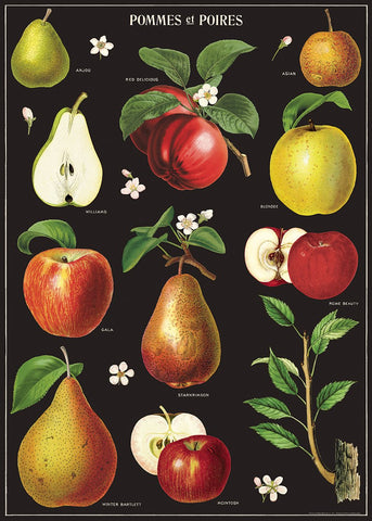 Apples and Pears + Hanging Kit