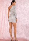 Confetti Sequins Dress - Silver