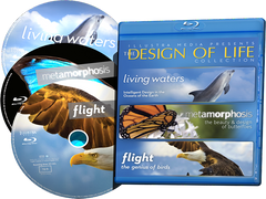 Design of Life Blu-ray Collection (NEW - 3 Discs in One Package - Living Waters, Flight, Metamorphosis)