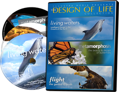Design of Life DVD Collection (NEW - 3 Discs in One Package - Living Waters, Flight, Metamorphosis)
