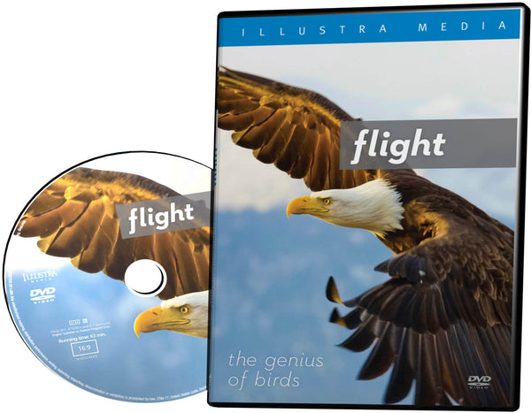 Flight: The Genius of Birds - DVD