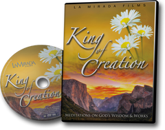 King of Creation - DVD