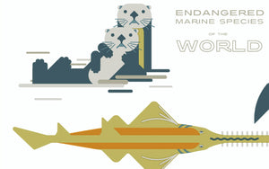 "Amok Island, ""Endangered Marine Species of the World"""