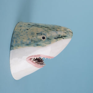 Earle the Great White Shark
