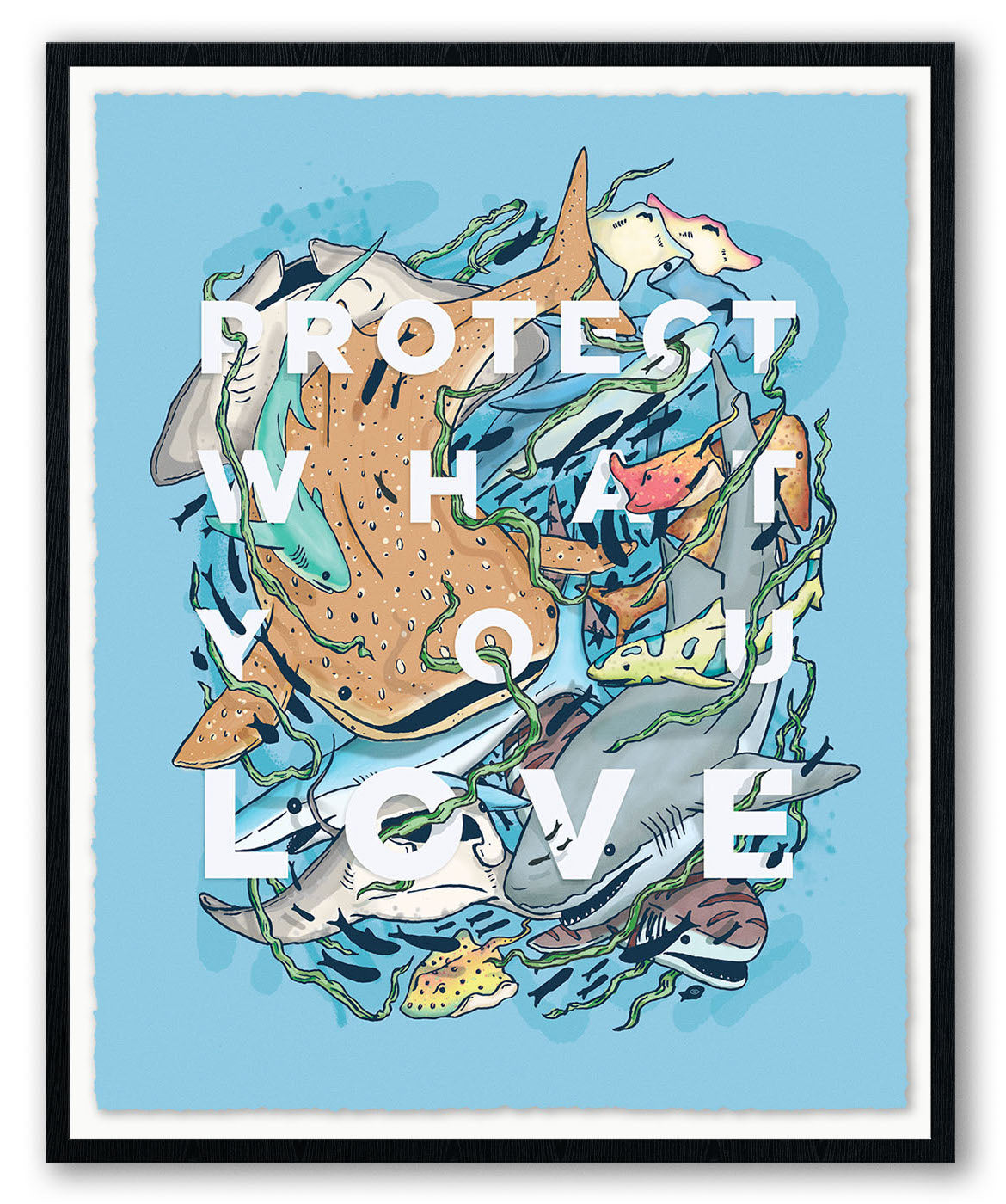 "Eric Vozzola, ""Protect What You Love: Sharks & Rays"""