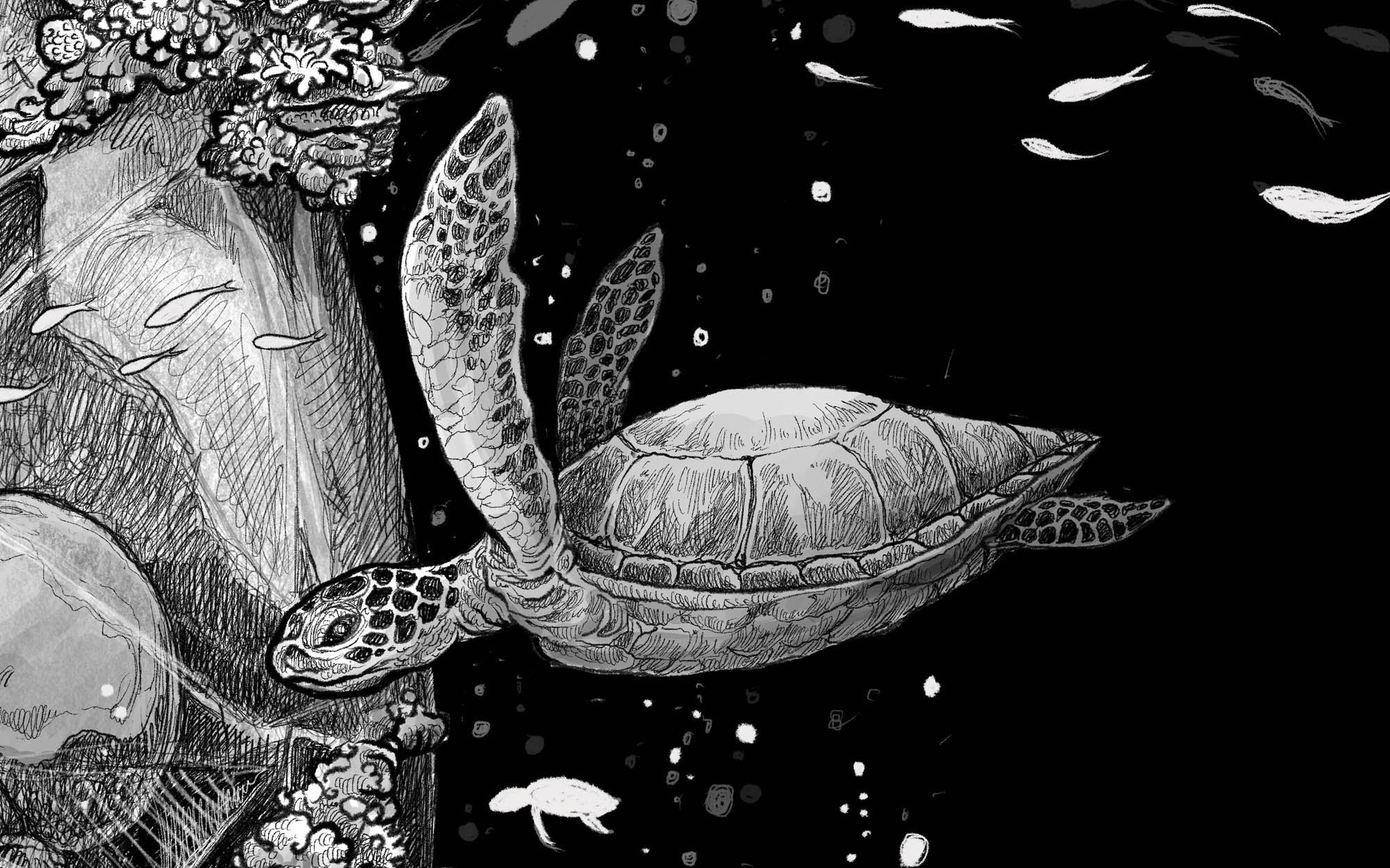 "Kerby Rosanes, ""Message in a Bottle"""