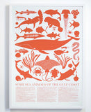 Art Print, Some Sea Animals of the Gulf Coast