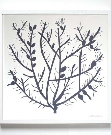 Art Print, Pencil Cholla Cactus
