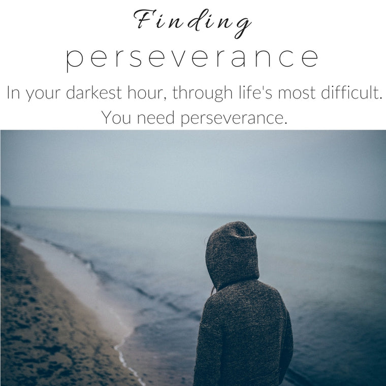 Holding onto Perseverance.