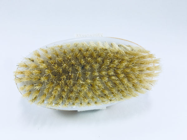 Body Brush With Removable Handle These dry brushes are perfect for the bath or dry air massage. Use them everyday to exfoliate dry skin and the stimulate blood circulation.  Great for skin wellness.  It comes with a removable handle.  Great for use during hydrotherapy treatments.  Great for spas.  Made from all natural materials.