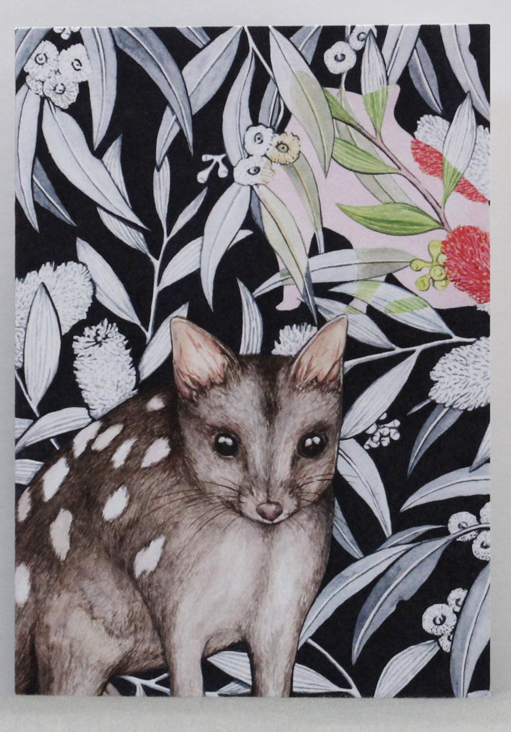 Northern Quoll Greeting Card
