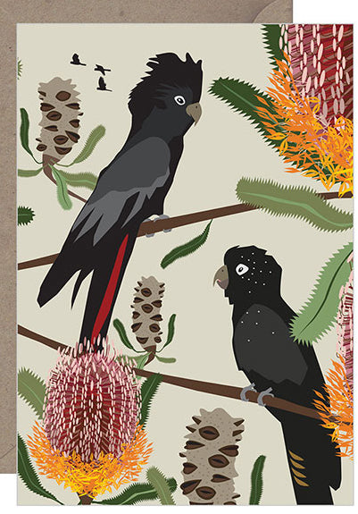 Black Cockatoos Firewood Banksia Card