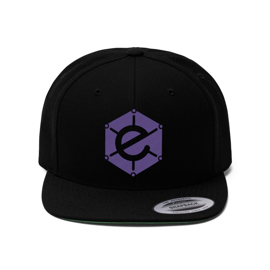 Electra SnapBack Flat Bill Hat with Purple logo