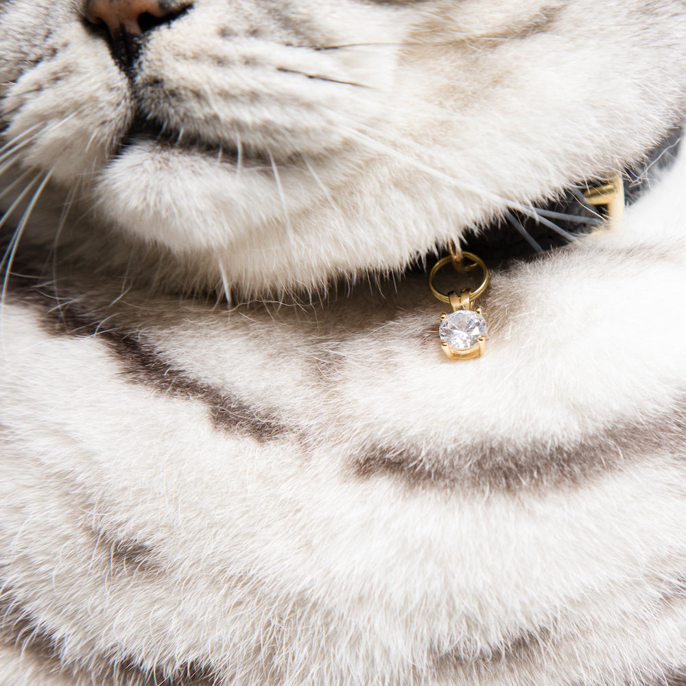 [product _vendor] Crystal Gem Cat Collar Charm - STYLETAILS