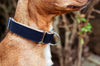 Two-Tone Cotton Dog Collar Vackertass
