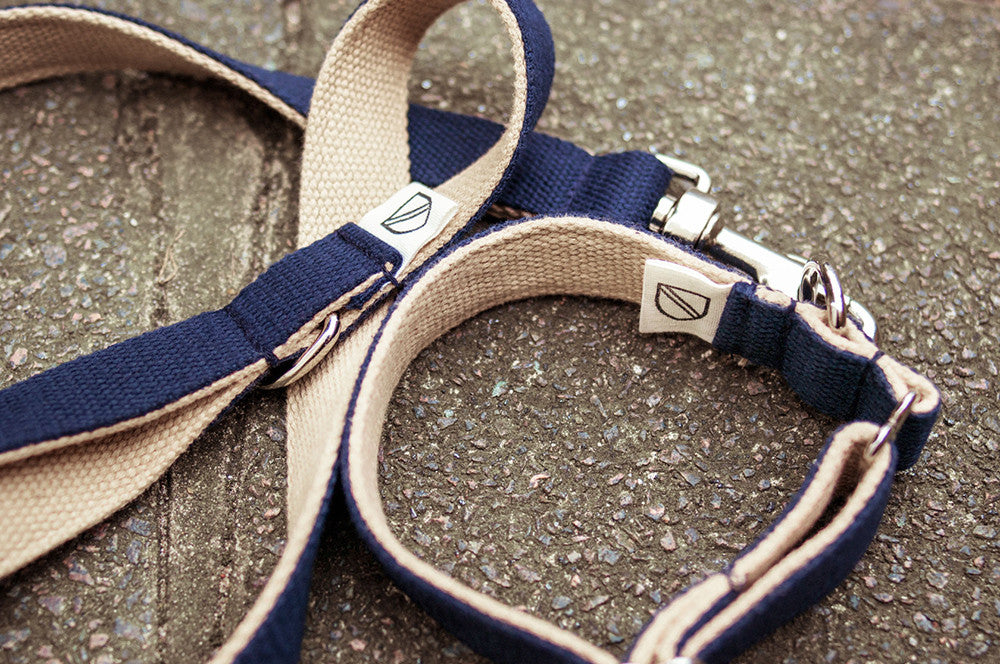 [product _vendor] Two Tone Cotton Webbing Dog Lead - STYLETAILS
