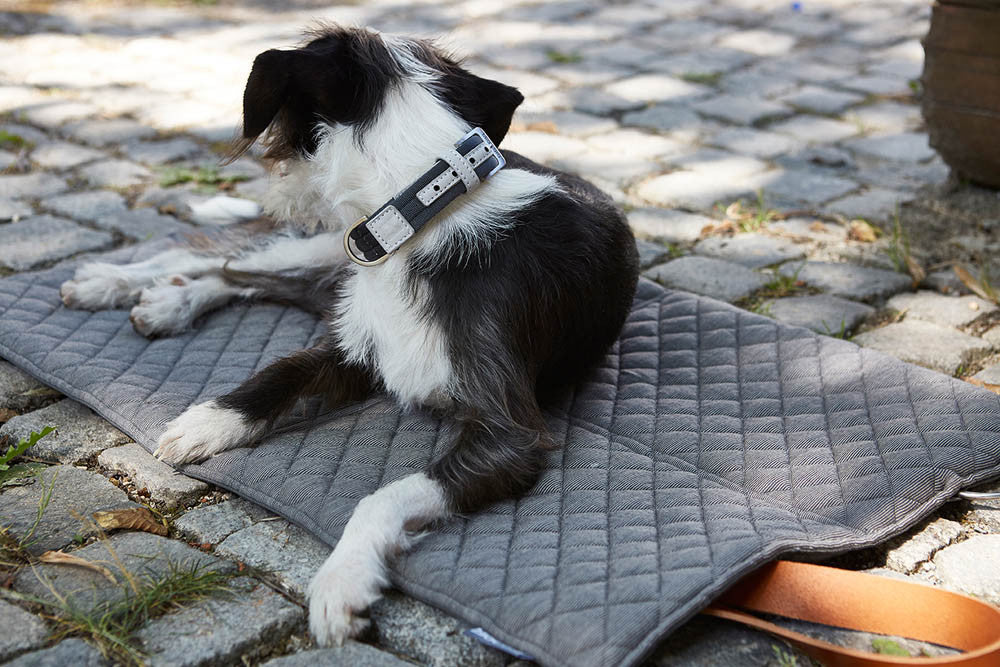 [product _vendor] Cosmo Dog Travel Bed - STYLETAILS