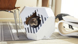 MIA Cardboard Cat House